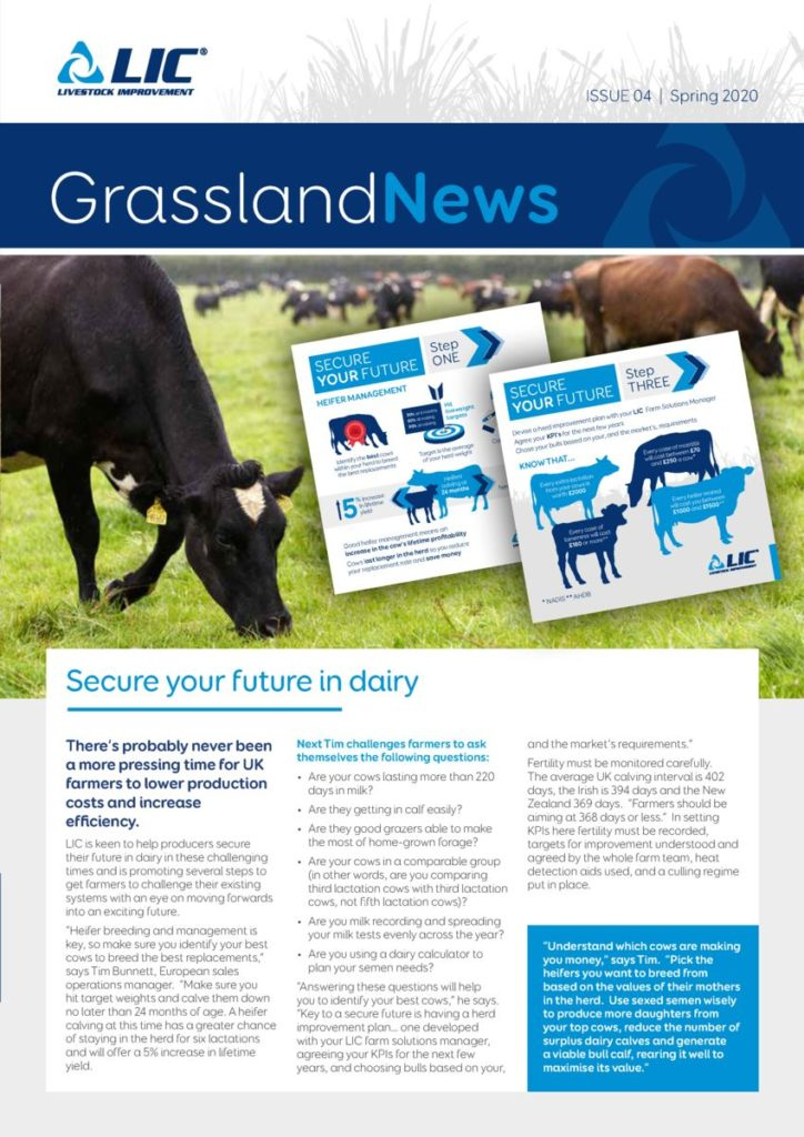 Cover image of Grassland News, Issue 04 | Spring 2020