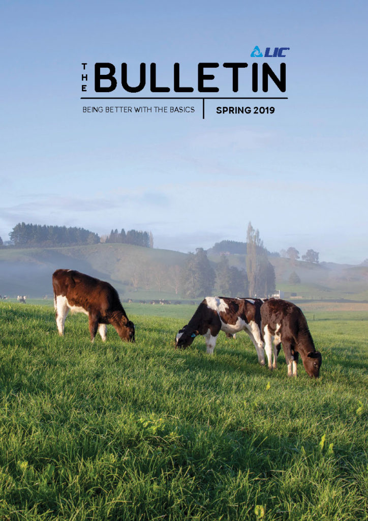 The Bulletin Spring 2019 - Cover Image